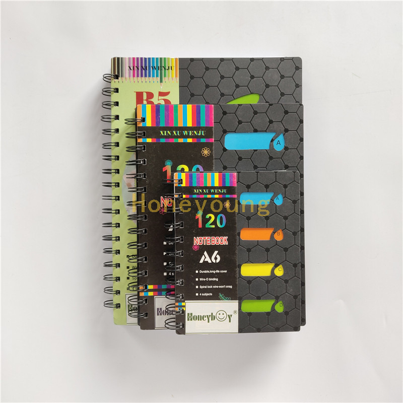 B5/A5/A6 Size 120 Sheets Four Subjects High Quality Spiral Notebook with LOGO SN-28